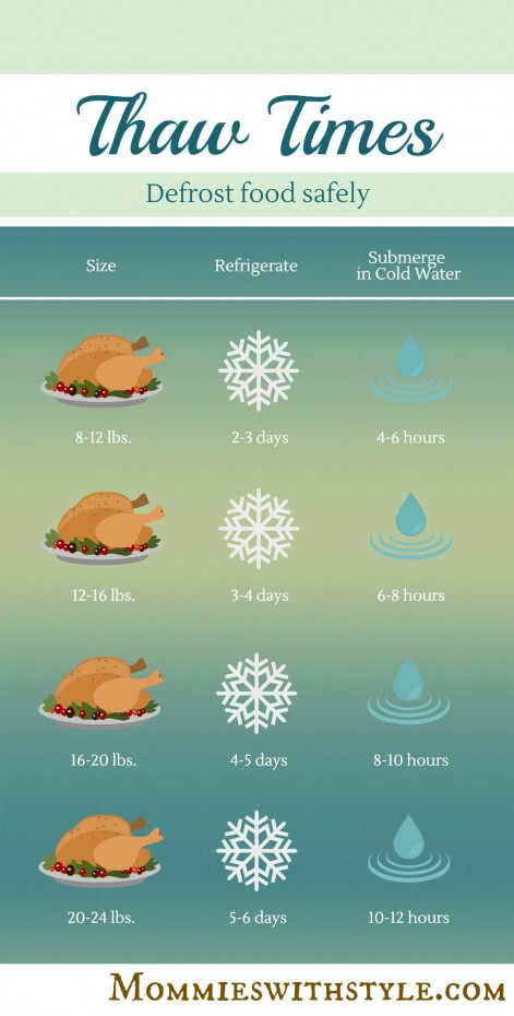 Thaw Times Infographic